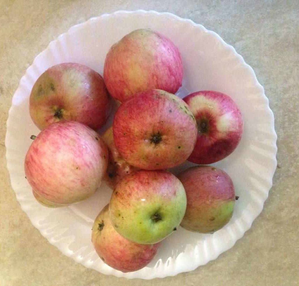 Компот из яблок и слив с виноградом